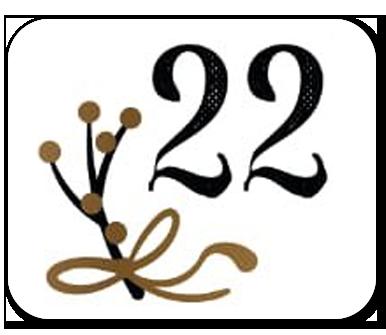 advent calendar door 22