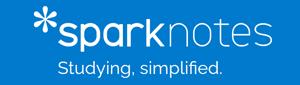Spark Notes logo